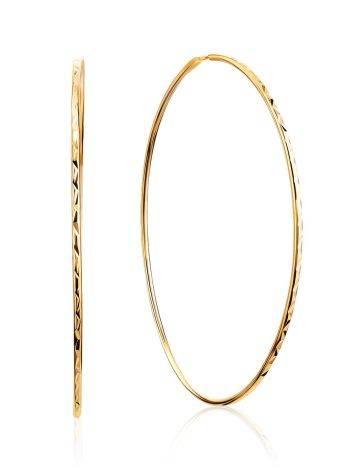 Trendy Golden Hoop Earrings, image