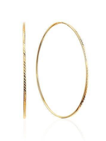 Chic Golden Hoop Earrings, image