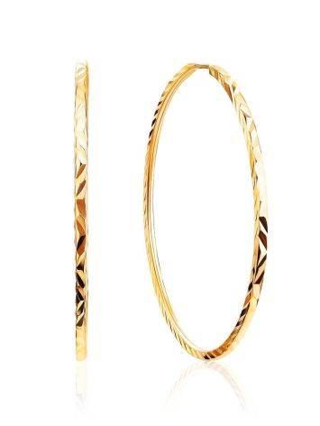 Stylish Golden Hoop Earrings, image