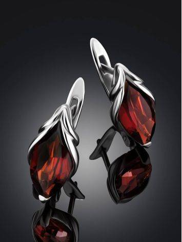 Chic Silver Garnet Earrings, image , picture 2