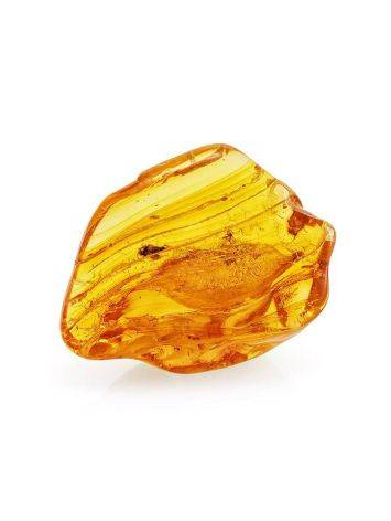 Souvenir Amber Stone With Fly Inclusions, image