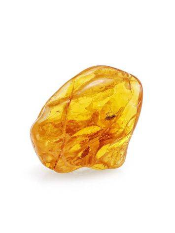 Natural Amber Stone With Mosquito Inclusion, image