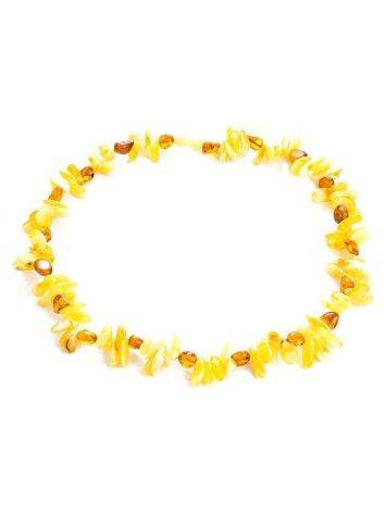Multicolor Amber Chocker Necklace, image , picture 4