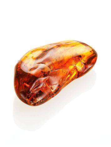 Amber Stone With Fly Inclusion, image , picture 4