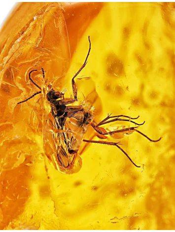 Natural Amber Stone With Mosquito Inclusion, image , picture 2