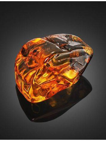 Amber Souvenir Stone With Inclusion, image , picture 3