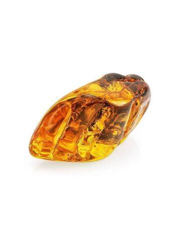 Amber Souvenir Stone With Inclusion, image , picture 4