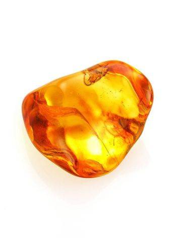 Glossy Amber Stone With Insect Inclusion, image , picture 5