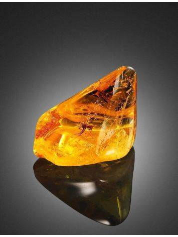 Luminous Amber Stone With Spider Inclusion, image , picture 3
