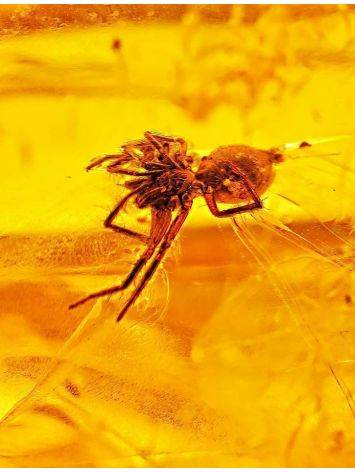 Luminous Amber Stone With Spider Inclusion, image , picture 2