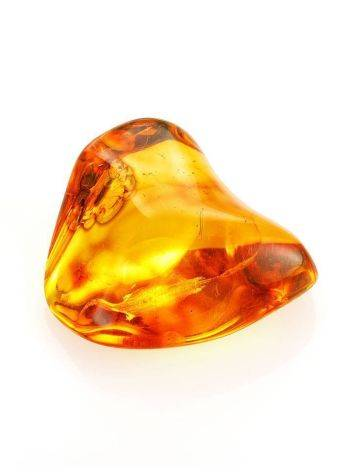 Glossy Amber Stone With Insect Inclusion, image