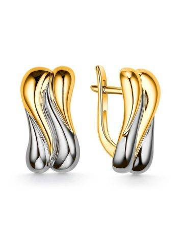 Two Toned Silver Earrings, image